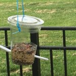 Make Bird Feeders from Recycled Materials